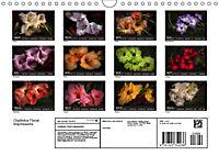 Gladiolus Floral Impressions (Wall Calendar 2019 DIN A4 Landscape) - Produktdetailbild 13
