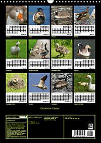Glückliche Gänse (Wandkalender 2019 DIN A3 hoch) - Produktdetailbild 13