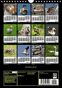 Glückliche Gänse (Wandkalender 2019 DIN A4 hoch) - Produktdetailbild 13