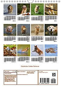 Glücklicher Golden Retriever (Wandkalender 2019 DIN A4 hoch) - Produktdetailbild 13