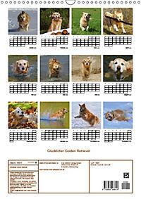 Glücklicher Golden Retriever (Wandkalender 2019 DIN A3 hoch) - Produktdetailbild 13
