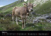 Glückliches Rindvieh 2019 (Wandkalender 2019 DIN A4 quer) - Produktdetailbild 3