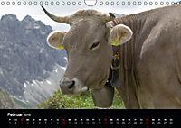 Glückliches Rindvieh 2019 (Wandkalender 2019 DIN A4 quer) - Produktdetailbild 2