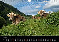 Glückliches Rindvieh 2019 (Wandkalender 2019 DIN A4 quer) - Produktdetailbild 7