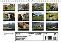 Glückliches Rindvieh 2019 (Wandkalender 2019 DIN A4 quer) - Produktdetailbild 13