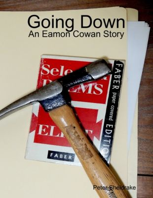 Going Down: An Eamon Cowan Story, Peter Sheldrake