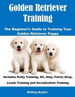 Golden Retriever Training: The Beginner's Guide to Training Your Golden Retriever Puppy: Includes Potty Training, Sit, Stay, Fetch, Drop, Leash Training and Socialization Training, Brittany Boykin