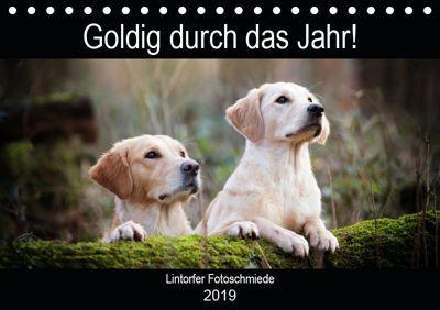 Goldig durch das Jahr! (Tischkalender 2019 DIN A5 quer), Jennifer Bohlmann
