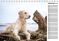 Goldig durch das Jahr! (Tischkalender 2019 DIN A5 quer) - Produktdetailbild 9
