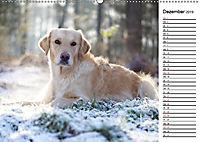 Goldig durch das Jahr! (Wandkalender 2019 DIN A2 quer) - Produktdetailbild 12
