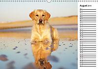 Goldig durch das Jahr! (Wandkalender 2019 DIN A3 quer) - Produktdetailbild 8