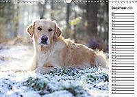Goldig durch das Jahr! (Wandkalender 2019 DIN A3 quer) - Produktdetailbild 12