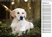 Goldig durch das Jahr! (Wandkalender 2019 DIN A4 quer) - Produktdetailbild 2