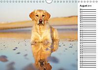 Goldig durch das Jahr! (Wandkalender 2019 DIN A4 quer) - Produktdetailbild 8