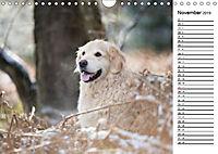 Goldig durch das Jahr! (Wandkalender 2019 DIN A4 quer) - Produktdetailbild 11