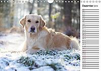 Goldig durch das Jahr! (Wandkalender 2019 DIN A4 quer) - Produktdetailbild 12