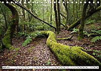 Gomera Traumlandschaften (Tischkalender 2019 DIN A5 quer) - Produktdetailbild 4