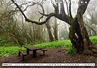 Gomera Traumlandschaften (Tischkalender 2019 DIN A5 quer) - Produktdetailbild 10