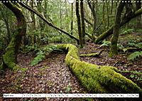 Gomera Traumlandschaften (Wandkalender 2019 DIN A3 quer) - Produktdetailbild 4
