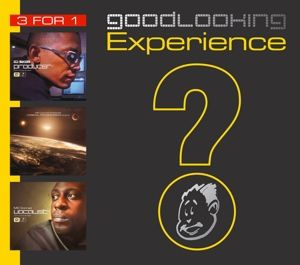 Goodlooking Experience, Diverse Interpreten