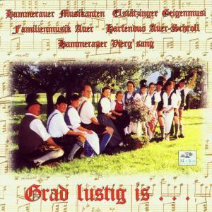 Grad Lustig Is..., Hammerauer Musikanten