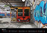 Grafittikunst (Wandkalender 2019 DIN A4 quer) - Produktdetailbild 5