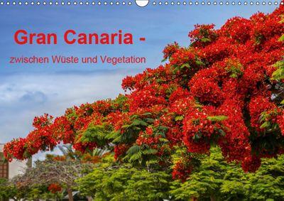 Gran Canaria - zwischen Wüste und Vegetation (Wandkalender 2019 DIN A3 quer), Brigitte Jaritz