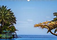 Gran Canaria - zwischen Wüste und Vegetation (Wandkalender 2019 DIN A3 quer) - Produktdetailbild 8