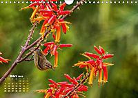 Gran Canaria - zwischen Wüste und Vegetation (Wandkalender 2019 DIN A4 quer) - Produktdetailbild 3