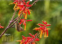 Gran Canaria - zwischen Wüste und Vegetation (Wandkalender 2019 DIN A3 quer) - Produktdetailbild 3