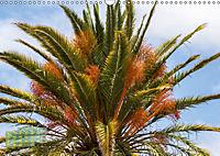 Gran Canaria - zwischen Wüste und Vegetation (Wandkalender 2019 DIN A3 quer) - Produktdetailbild 5