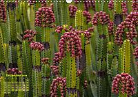 Gran Canaria - zwischen Wüste und Vegetation (Wandkalender 2019 DIN A3 quer) - Produktdetailbild 12