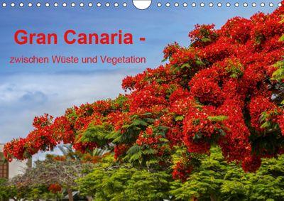 Gran Canaria - zwischen Wüste und Vegetation (Wandkalender 2019 DIN A4 quer), Brigitte Jaritz