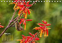 Gran Canaria - zwischen Wüste und Vegetation (Tischkalender 2019 DIN A5 quer) - Produktdetailbild 3