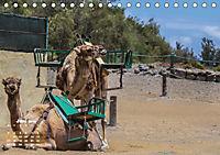 Gran Canaria - zwischen Wüste und Vegetation (Tischkalender 2019 DIN A5 quer) - Produktdetailbild 6