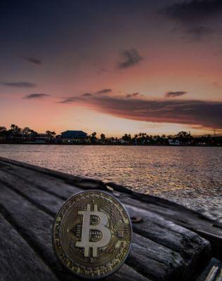 Gratis Bitcoin verdienen, Roger Maley