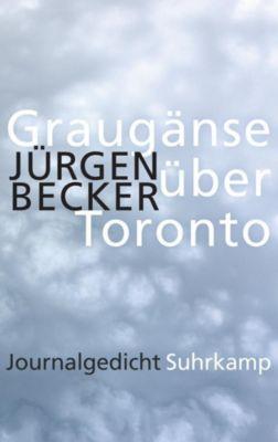 Graugänse über Toronto - Jürgen Becker |