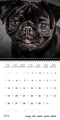 Great character dogs (Wall Calendar 2019 300 × 300 mm Square) - Produktdetailbild 8