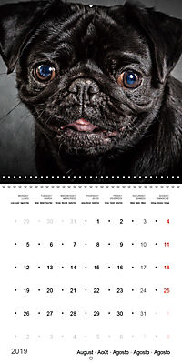 Great character dogs (Wall Calendar 2019 300 × 300 mm Square) - Produktdetailbild 8
