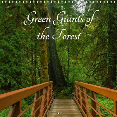 Green Giants of the Forest (Wall Calendar 2019 300 × 300 mm Square), Angelika Metzke
