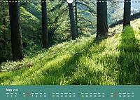 Green in the Landscape (Wall Calendar 2019 DIN A3 Landscape) - Produktdetailbild 5