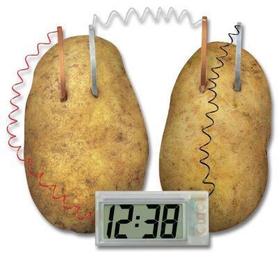Green Science Kartoffeluhr, Experimentierkasten