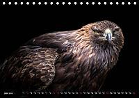 Greifvögel und Eulen (Tischkalender 2019 DIN A5 quer) - Produktdetailbild 6