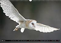 Greifvögel und Eulen (Wandkalender 2019 DIN A3 quer) - Produktdetailbild 5