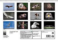 Greifvögel und Eulen (Wandkalender 2019 DIN A3 quer) - Produktdetailbild 13