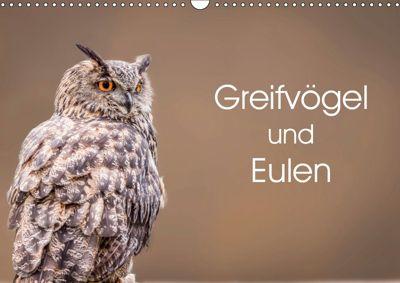 Greifvögel und Eulen (Wandkalender 2019 DIN A3 quer), Markus van Hauten