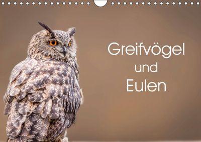 Greifvögel und Eulen (Wandkalender 2019 DIN A4 quer), Markus van Hauten