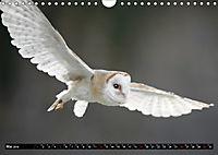 Greifvögel und Eulen (Wandkalender 2019 DIN A4 quer) - Produktdetailbild 5