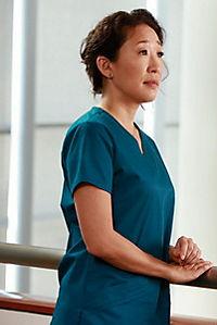 Grey's Anatomy - Die komplette Staffel 10 - Produktdetailbild 5