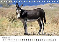 Griechenland - Von Epirus bis zu den Inseln (Tischkalender 2019 DIN A5 quer) - Produktdetailbild 2